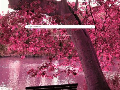 Pink Leaves Theme