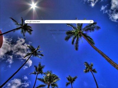 Sunny Palms Theme